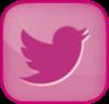 Pink Twitter Bird